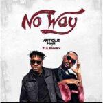 Article Wan ft Tulenkey - No Way