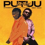 Stonebwoy ft Remy Adan - Putuu Remix (Official Video)