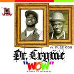 Dr Cryme – Wow Ft Fuse ODG