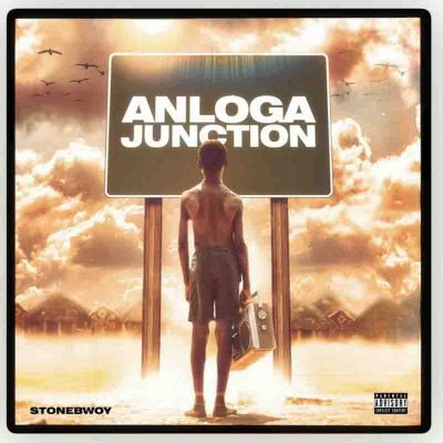 anlogo junction